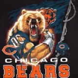 Lower Priced Chicago Bears Tickets Available at SuperbTicketsOnline